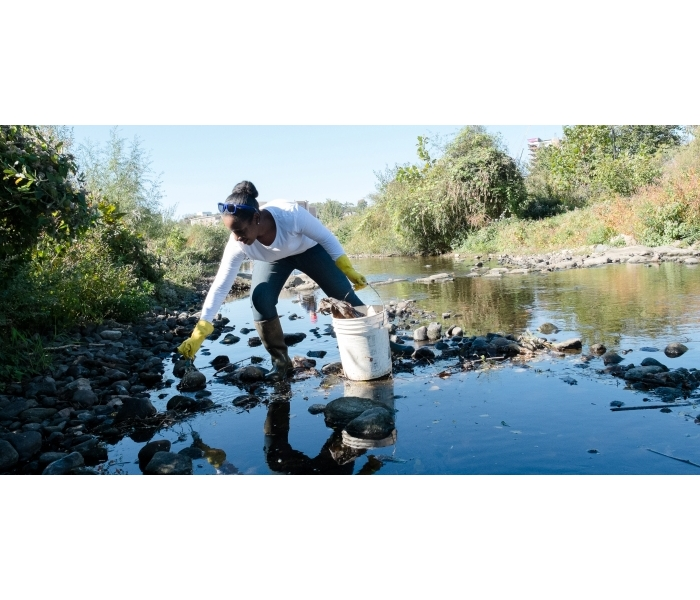 Mill River Clean Up