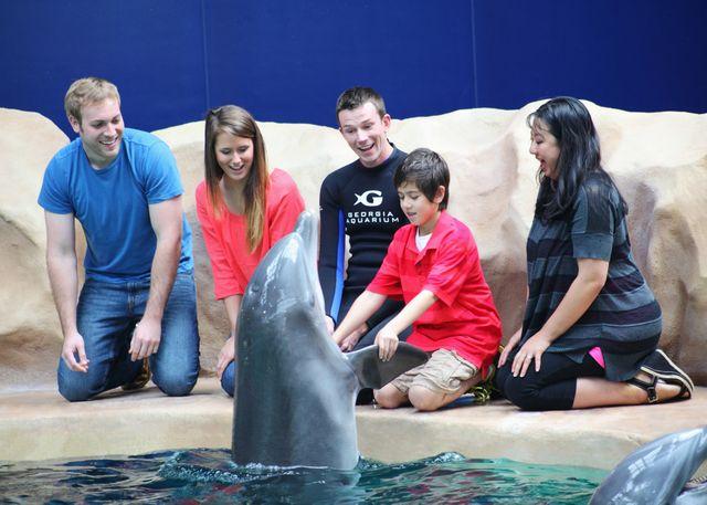 Georgia Aquarium Launches New Interactive Dolphin Encounter