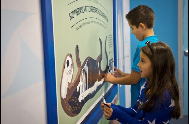 Aquanaut Adventure at Georgia Aquarium