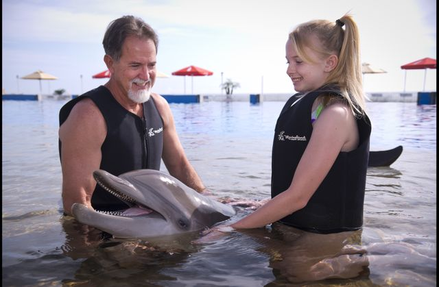 Discover Dolphins Program