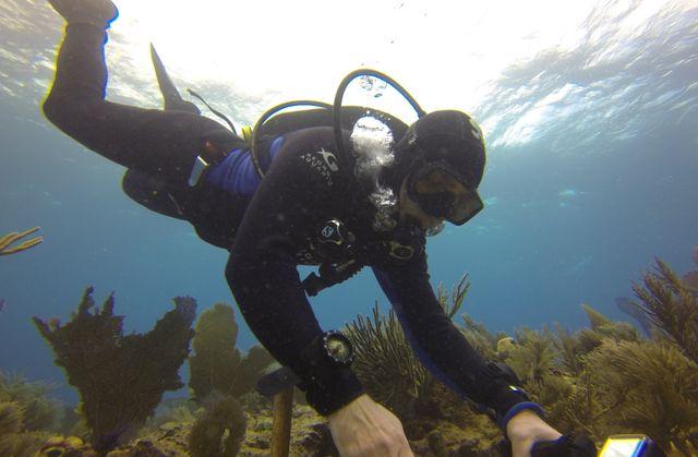 Steve Hartter-Reef