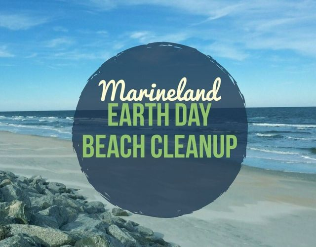 Join Marineland Dolphin Adventure for an Earth Day Beach Cleanup