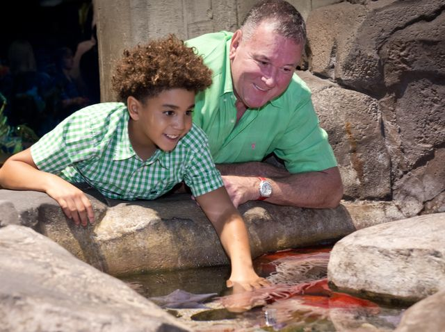 Enjoy Father's Day at Georgia Aquarium with a Fun-Filled Weekend of Events