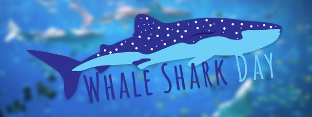 Celebrate International Whale Shark Day at Georgia Aquarium