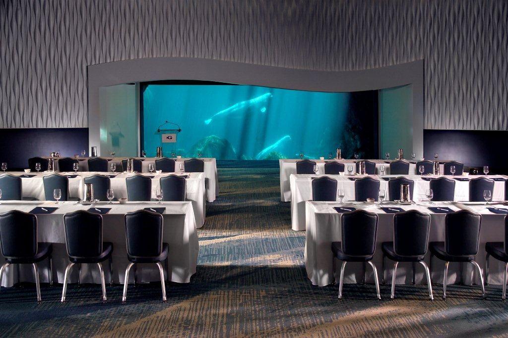 Arctic Ballroom - Meeting