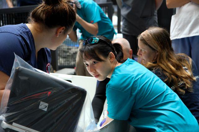 Cornell University's AQUAVET Program Receives $15,000 Donation from Georgia Aquarium