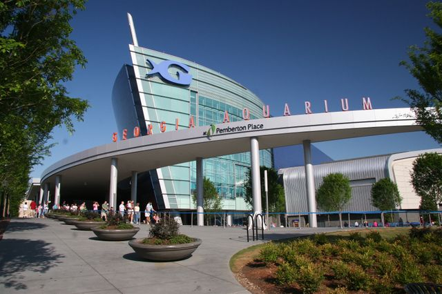 Steve Koonin Named Georgia Aquarium Chairman of the Board