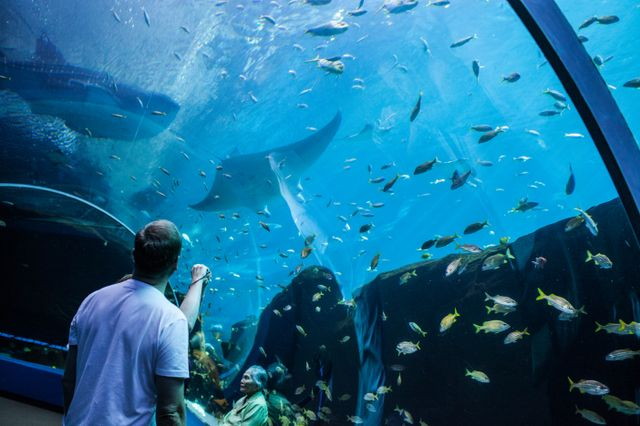 Top 5 Spring Break Experiences at Georgia Aquarium