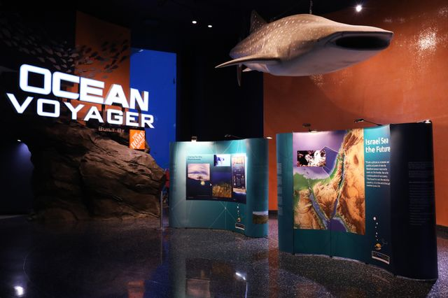 Georgia Aquarium Hosts New Traveling EcoOcean Exhibit