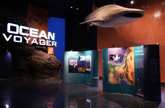 Georgia Aquarium Hosts New Traveling EcoOcean Exhibit
