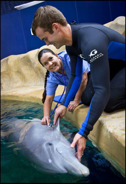 Underwater Medicine