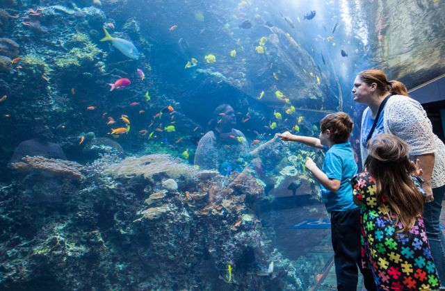 Georgia Aquarium Hosts Families for Autism Awareness Day