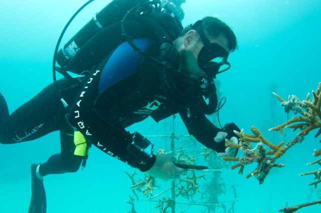 Exploring our Ocean's Wild Wildlife