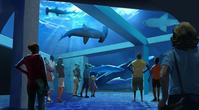 Georgia, You're Going to Need a Bigger Aquarium