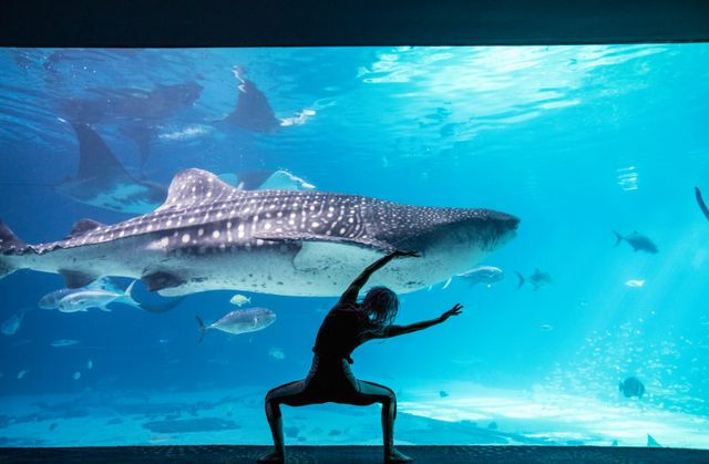 GAQ-Yoga-Wellness-455_preview