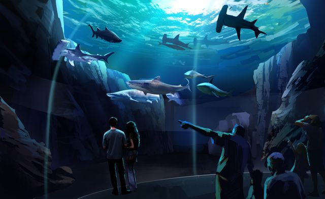 Georgia Aquarium Breaks Ground on Expansion 2020
