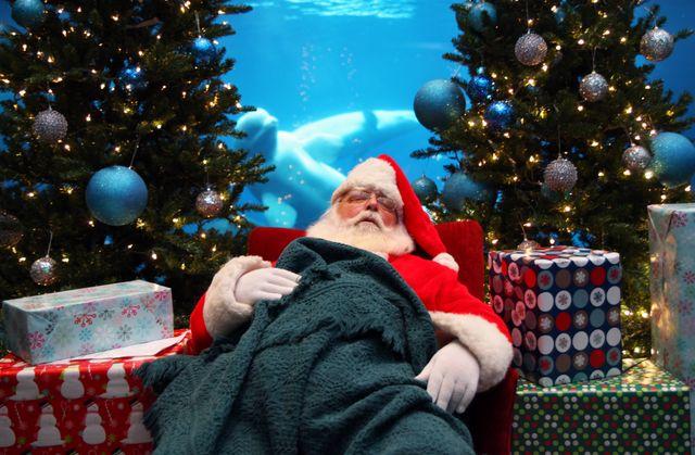 Wake Up Santa 1
