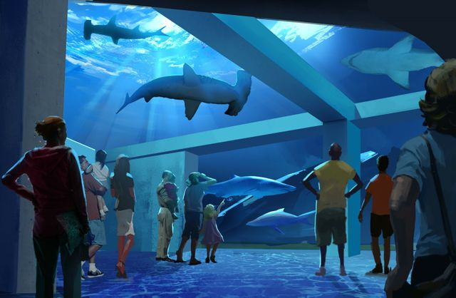 Expansion 2020 Animal Gallery 1