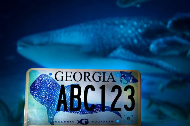 Ride in Style with A New Georgia Aquarium License Plate