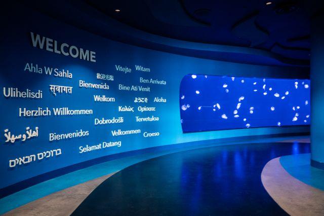 Georgia Aquarium Earns Prestigious STEM Certification