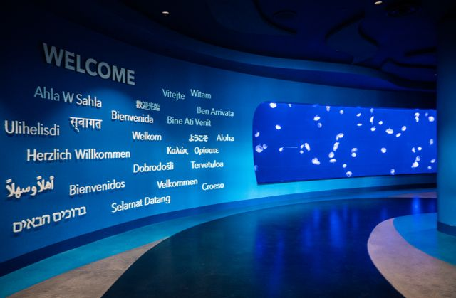 Georgia Aquarium Earns Prestigious STEM Certification