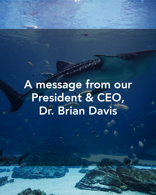 A message from our President & CEO, Dr. Brian Davis
