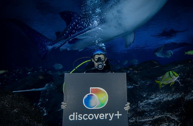 Discovery and Georgia Aquarium Enter Into All-New Multi-Platform Content Partnership To Document Animal Experiences and Global Conservation Efforts