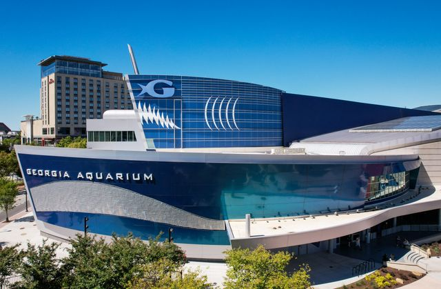 Dr. Brian Davis, Georgia Aquarium President and CEO, Sworn-In as New Chair of the Board for Association of Zoos and Aquariums