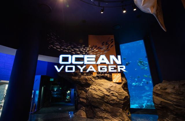 Ocean Voyager Built by The Home Depot