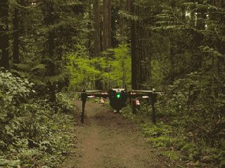Into the Woods: This Drone Goes Where No GPS Can