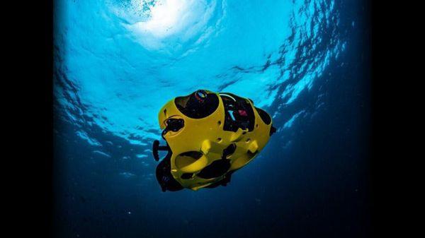 What Lies Beneath: Underwater Drone Unlocks Secrets of the Deep