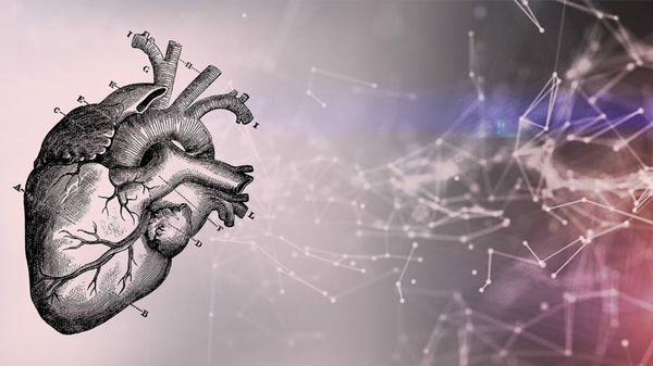 Taking Deep Learning to Heart: Startup Using AI to Improve Heart Disease Diagnosis