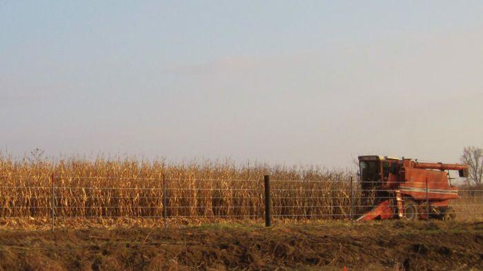 Dig In: Startup Tills Satellite Data to Harvest Farm AI