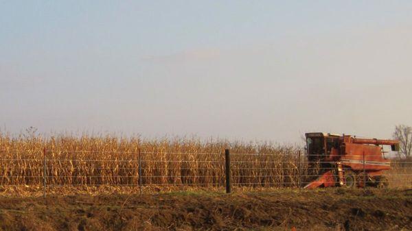 Iowa_harvest_2009-842x450