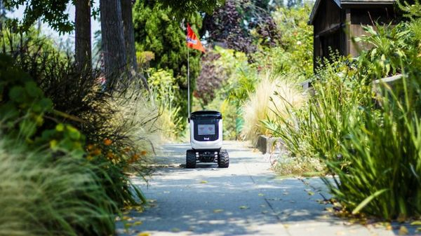 Let Them Eat Take-Out: Kiwibots Bring Sustenance to Students