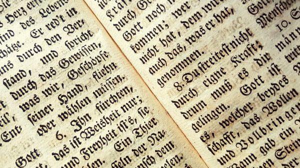 BERT Does Europe: AI Language Model Learns German, Swedish