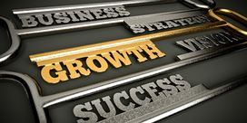5 Common Business Growth Strategies To Consider