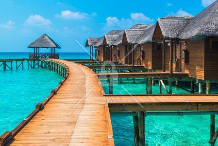 vacation-fraud-header