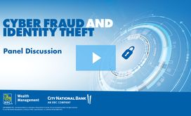 Cyberfraud and Identity Theft Panel Discussion