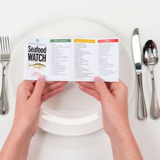 The Monterey Bay Aquarium's Seafood Watch guide in use, helping seafood lovers make sustainable choices. ©Monterey Bay Aquarium