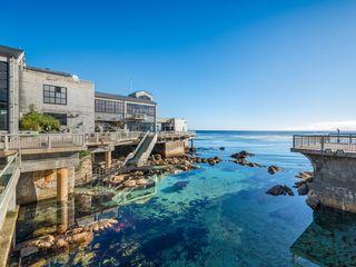 Scenic shot of the Great Tide Pool and exterior back deck of the Monterey Bay Aquarium.©Monterey Bay Aquarium