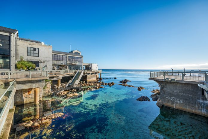 Scenic photo of the Great Tide Pool and exterior of the back deck of the Monterey Bay Aquarium. ©Monterey Bay Aquarium