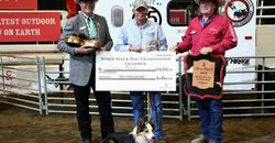 Corey Perry World Stock Dog Champion 2015