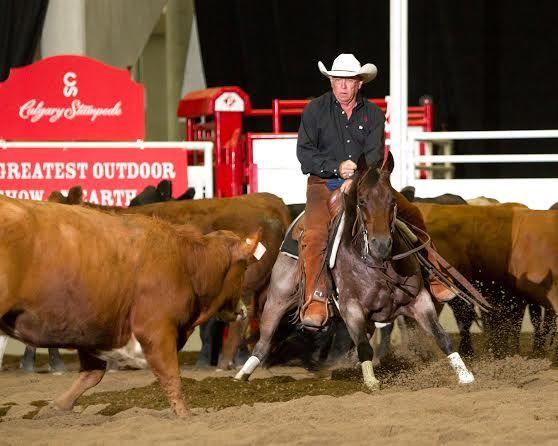 Turner Wins Again In Calgary Stampede Cutting Final
