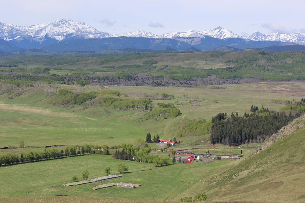 Media Advisory Calgary Stampede S Historic Oh Ranch To