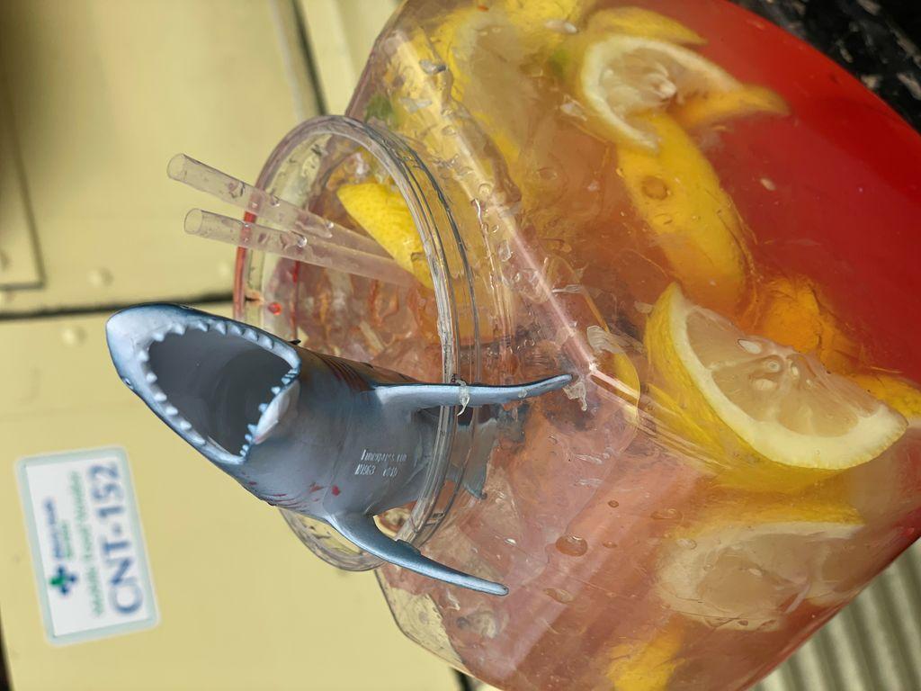 Shark Attack Lemonade_