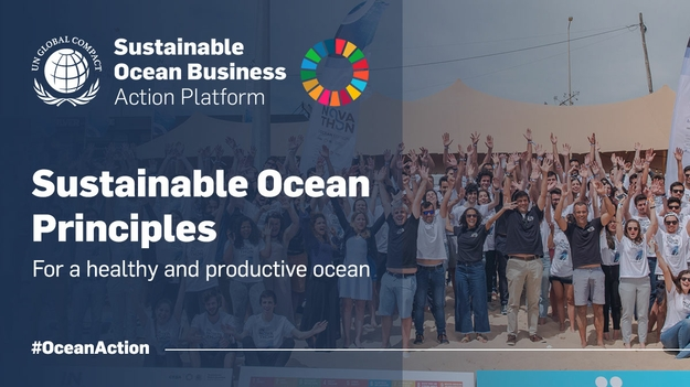 The Sustainable Ocean Principles of the United Nations Global Compact are a framework for responsible business practices in the Ocean across sectors and geographies.