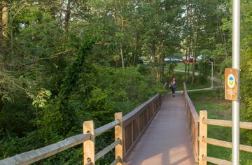 A bridge through protected wetlands at FM Global's corporate office park
