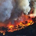 Climate change preparedness a competitive advantage
