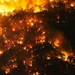 'Forever War' with fire gas California battling forests instead